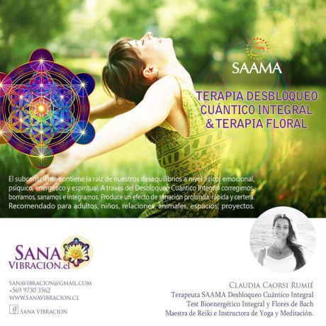 SAAMA CHILE - SANAVIBRACION.CL